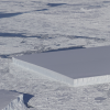 NASA's sea ice survey captures something truly bizarre